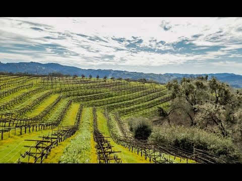 Exclusive Winery and Vineyard | Anderson Valley Estate, Mendocino County, California
