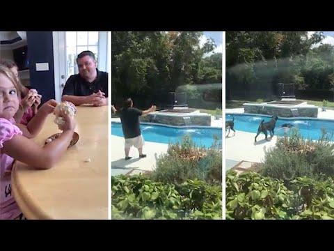 Мужчина бросился в бассейн, узнав пол пятого ребенка