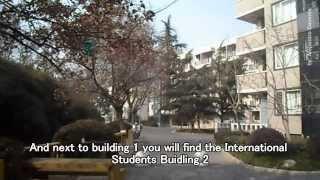 Университет Тундзи / Tongji University – 同济大学