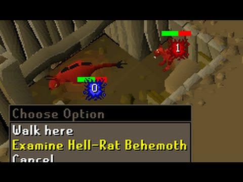 Killing Hell-rat Behemoths for 1 hour