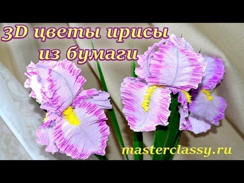 Irises from paper video tutorial. 3D цветы ирисы из бумаги. Объемные цветы своими руками: видео урок