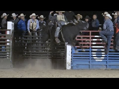 Video Jinnity's 14th Annual Bull Riding Challenge download in MP3, 3GP, MP4, WEBM, AVI, FLV January 2017