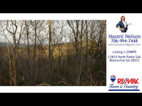 Land/Lot For Sale - L1&15 North Forke Sub, Blairsville, GA