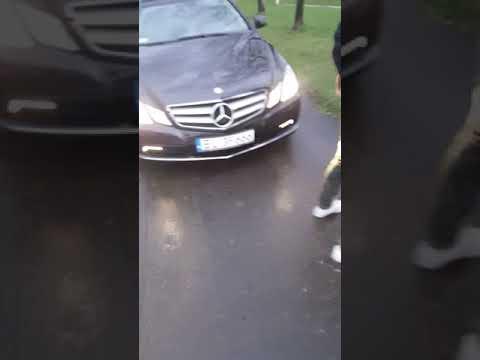 """""""Ale co k**wa rozjedziesz nas?!"""" Nafukany cwaniak z Mercedesa vs przechodnie!"""