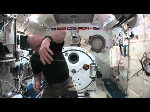 yo - Fun with Physics! NASA astronaut Don Pettit enjoyed some of his off-duty time showcasing yo-yo behavior in microgravity aboard the International Space Station.