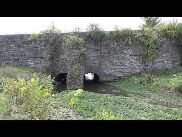 Kentucky's  Oldest  Bridge,  Royal  Springs