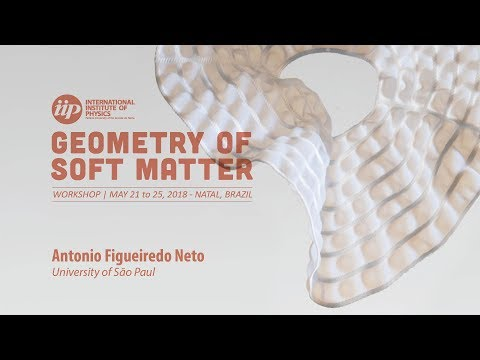 Nonlinear optical properties of magnetic fluids - Antonio Figueiredo Neto