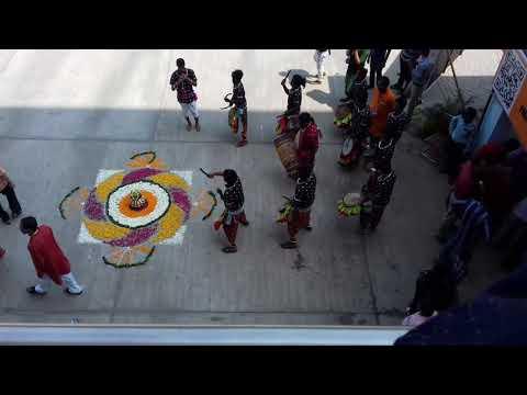 Video Kusang dulduli, Bolangir performance in Delhi download in MP3, 3GP, MP4, WEBM, AVI, FLV January 2017