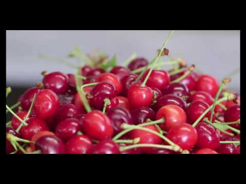 Orchard View Cherries: Packing the Perfect Cherry