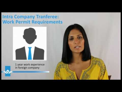 Intra Company Transfer Work Permit Requirements Video