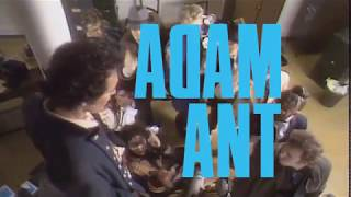 Adam Ant - Beacon Theatre - September 19, 2019