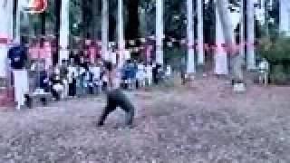 رياضي مجنون يتحدي شجرة عملاقة يريد ان يمسكها اثناء سقوطها قمة الضحك