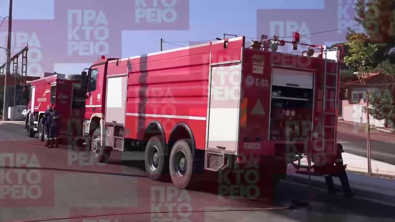 Υπό μερικό έλεγχο η πυρκαγιά στον Βαρνάβα – Δεν κινδυνεύουν κατοικίες από τη φωτιά στη Ραφήνα
