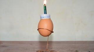 Video how to make lanterns eggshell MP3, 3GP, MP4, WEBM, AVI, FLV Desember 2018