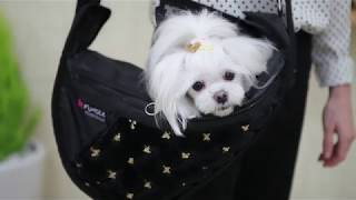 video thumbnail FUNDLE Wonder Bag Cooling Carrier for Pet / Gray / Medium Size / 0~3kg Dogs youtube