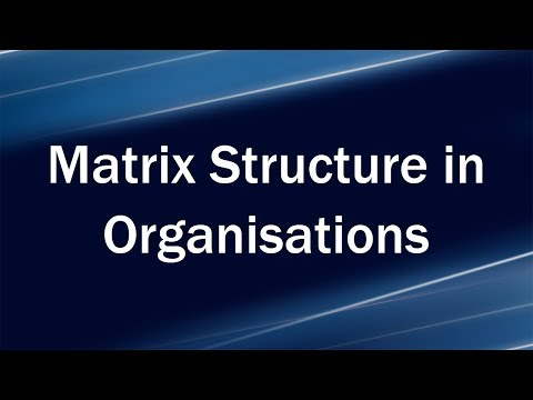 Matrix Structure in Organisations