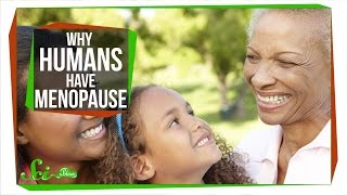 Why Do Humans Have Menopause?