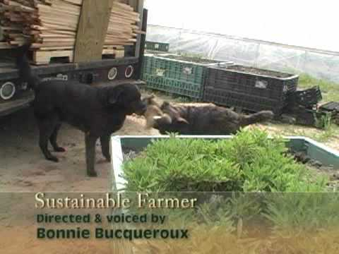 Sustainable Farmer - Titus Farms: The Next Generation