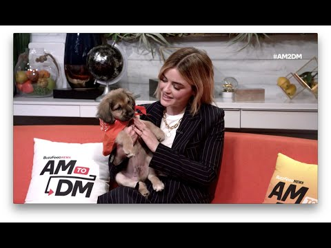 Lucy Hale Says She Likes Dogs More Than People And Honestly, Same