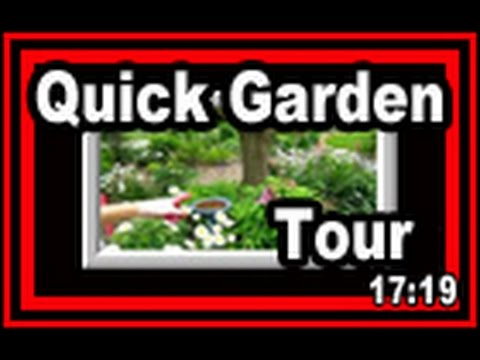 garden video - Here's a quick garden tour of what's still blooming in our Wisconsin Garden. We just could not resist giving these beautiful floral blooms their due and want...