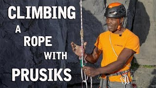 How To Climb A Rope Using Prusiks | Climbing Daily Ep.1549 by EpicTV Climbing Daily