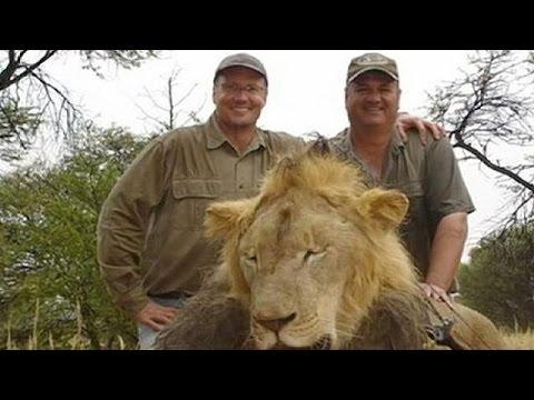 Η Ζιμπάμπουε ζητά την έκδοση του κυνηγού που σκότωσε το λιοντάρι Σέσιλ