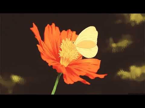 travis scott ~ butterfly effectノ slowed + reverb ノ