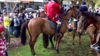 Camperdown (VIC) Australia  city photo : Horses and hounds visit Camperdown Victoria AU