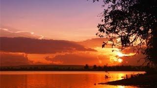 EmĐã Quên Một Dòng Sông - Nhạc Không Lời ( Hòa Tấu đàn Tranh Việt Nam )