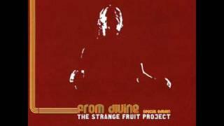 Strange Fruit Project - Aquatic Groove