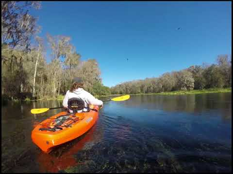 Up the Ichetucknee River - January 15, 2018
