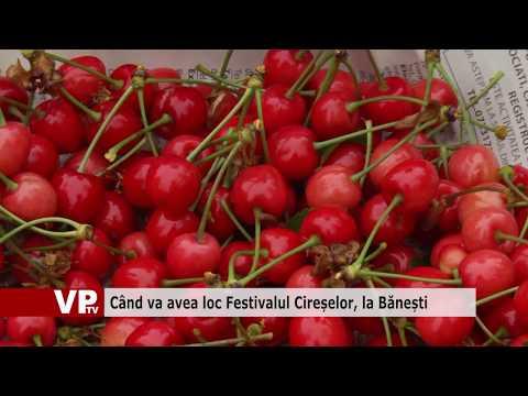 Când va avea loc Festivalul Cireșelor, la Bănești