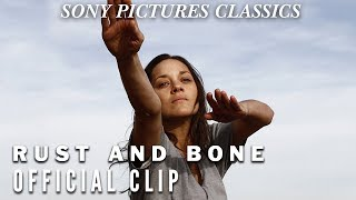 Nonton Rust And Bone Clip   Desire Film Subtitle Indonesia Streaming Movie Download