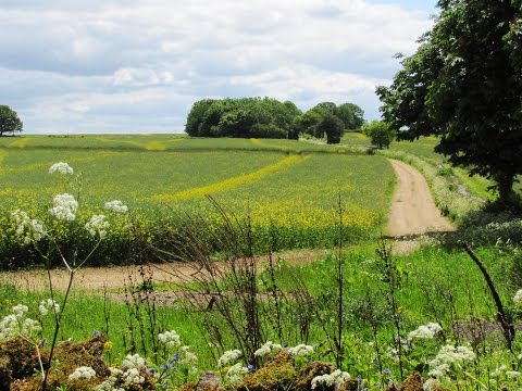 The Cotswolds   Burford to Swinbrook round | oxfordshire  Walks