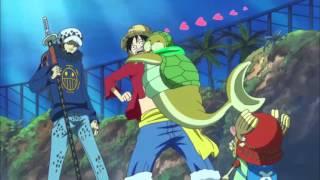 Reencuentro entre Luffy y Seal!