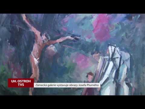 TVS: Uherský Ostroh – Vernisáž výstavy obrazů Josefa Pšurného