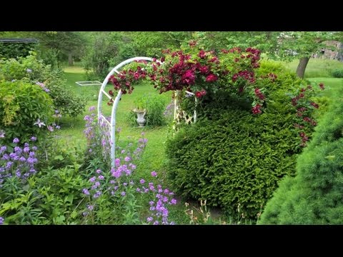 Rebecca's Garden Southern Illinois - On the Farm June 2016 = WP 20160525 18 26 38 Pro