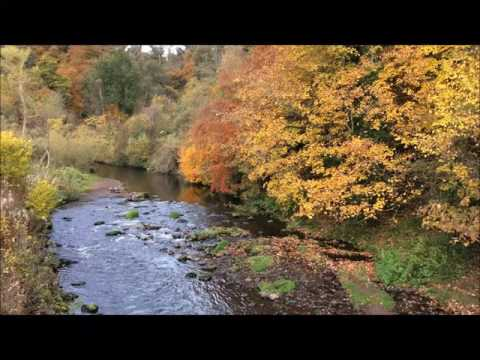 Roslin Glen Country Park. The Gentle Sound Of The River North Esk