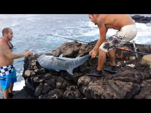 79 lb Ulua – South Point, Hawaii 2013