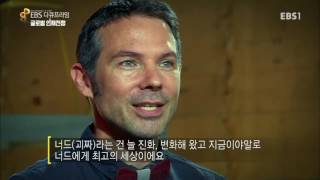 #1 [EBS 다큐프라임] 글로벌 인재전쟁 1부 - 혁신가의 세상_#001