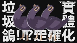 這網友把垃圾鴿實體化 網友下跪:哪買得到?