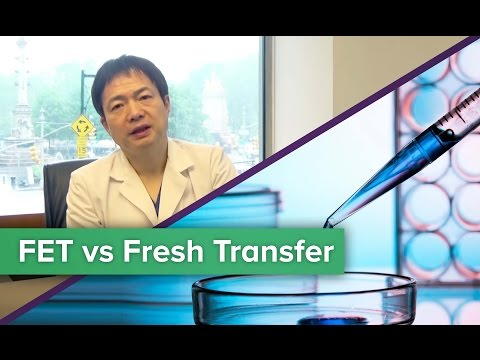Sex before frozen embryo transfer