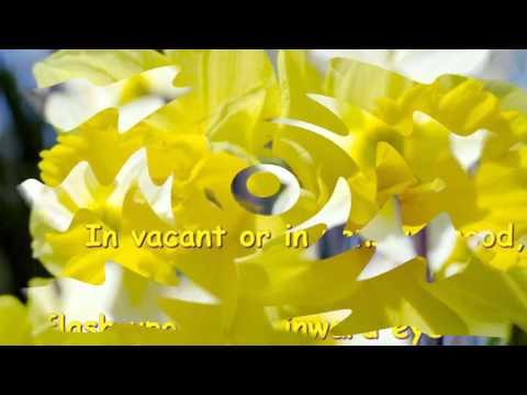 Classical - Mozart - Piano Concerto No.21 accompanied William Wordsworth Daffodils