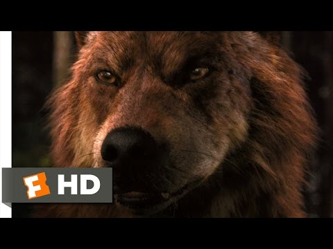 Twilight: Breaking Dawn Part 1 (8/9) Movie CLIP - Jacob Imprints (2011) HD