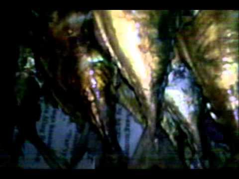 TINAPA (do it yourself SMOKED FISH!! how to make smoked fish)Part 2