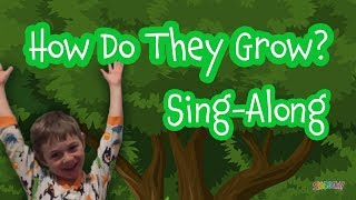 How Do They Grow? An Israeli Tu B'shvat Sing Along