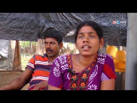 En Iname En Saname | என் இனமே என் சனமே | Ep 33 | IBC Tamil TV