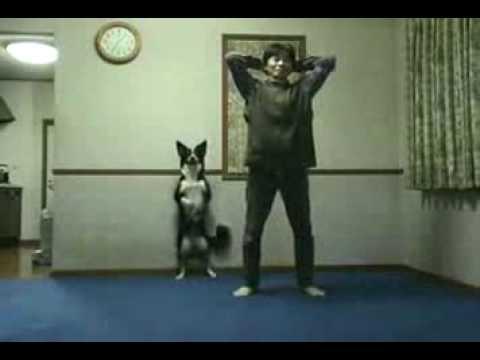 il-cane-che-imita-il-padrone-135
