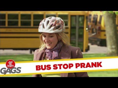 Venus Flytrap Bus Stop - Youtube