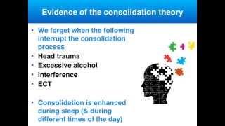 Memory - Consolidation